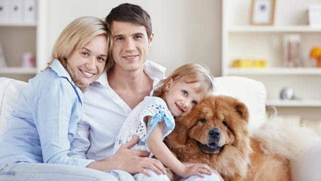 Wills & Trusts dog-young-family Direct Wills Thame